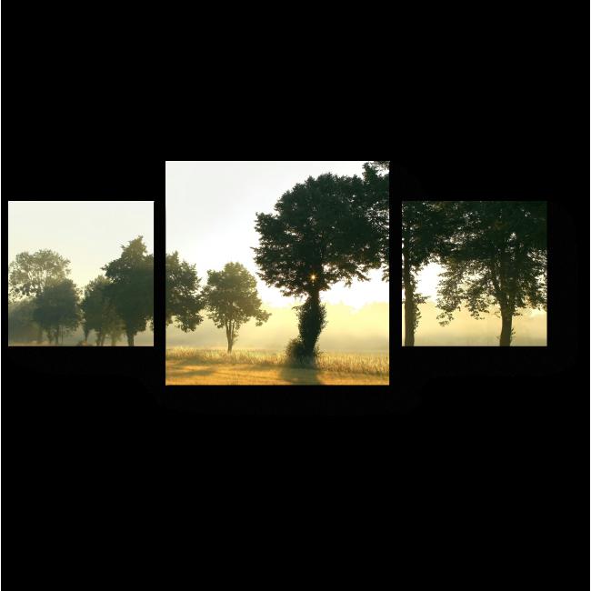 Модульная картина Поле, залитое солнцем