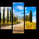 Дорога с кипарисами