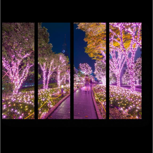Модульная картина Зимний Парк в Токио