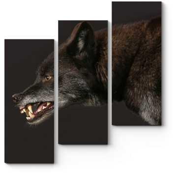 Модульная картина Не злите волка