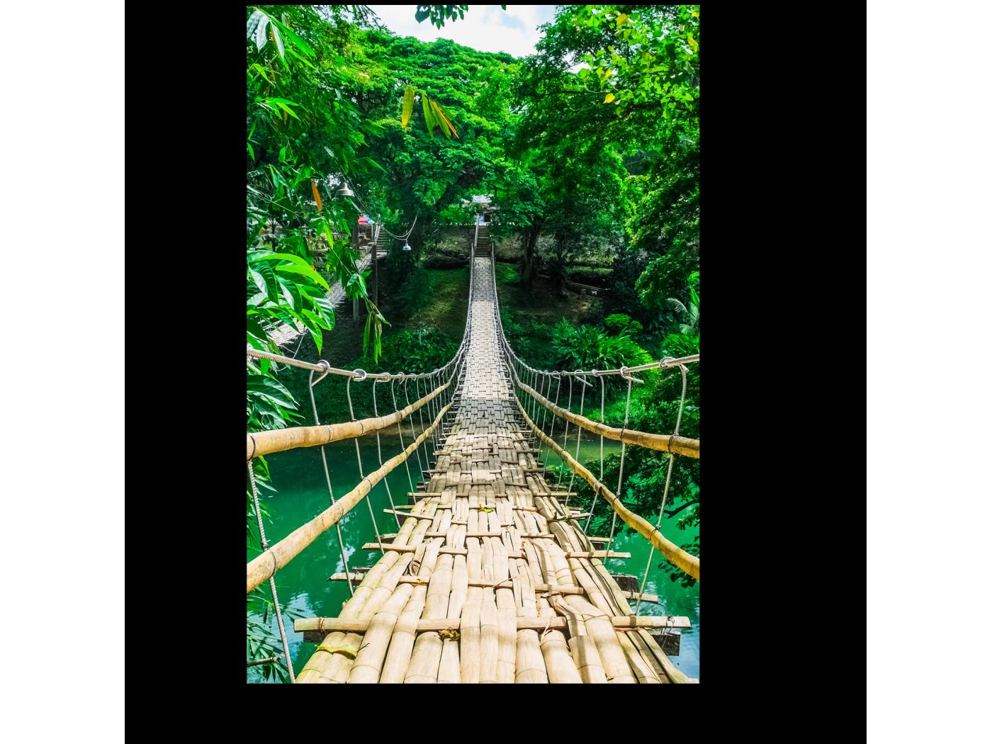 постер подвесной канатный мост хофф дружно