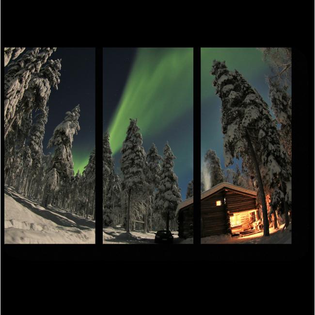 Модульная картина Зимний сказочный лес