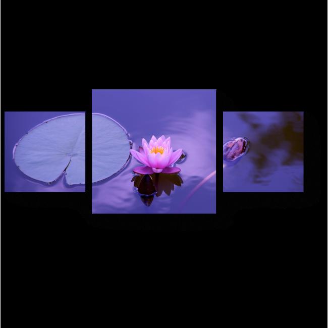 Модульная картина Беззащитный лотос