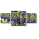 Букеты из лавандовых цветов, Прованс