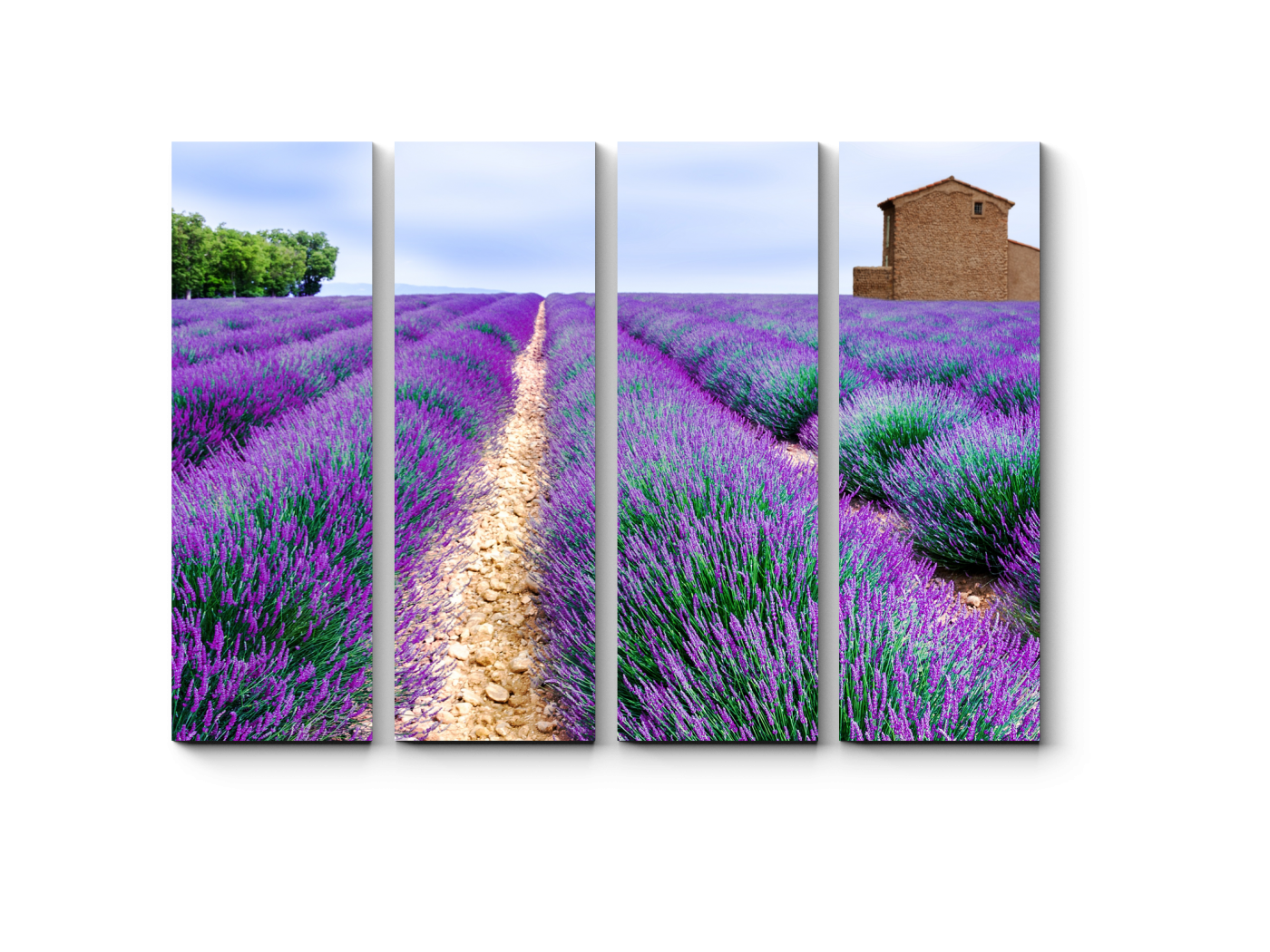картинки с лавандой в стиле прованс горизонтальные модульные картины лучшие
