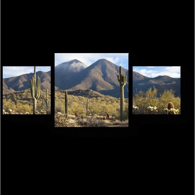 Модульная картина Вид на горы в Скоттсдейле