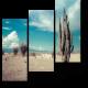 Кактус в пустыне