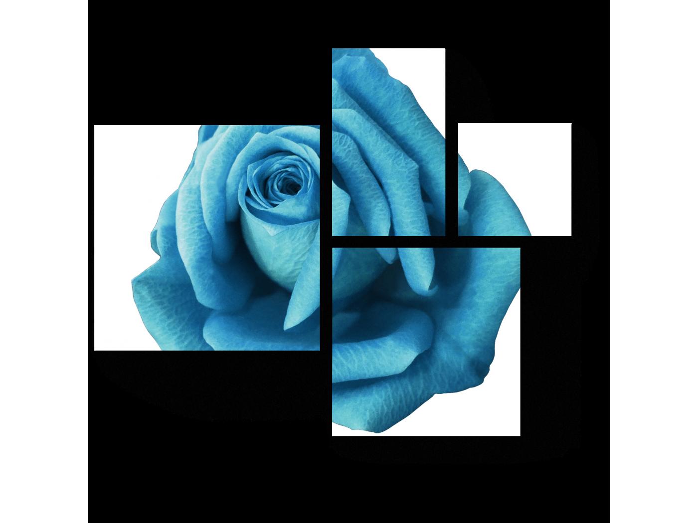 Модульная картина Голубая роза (72x60) фото