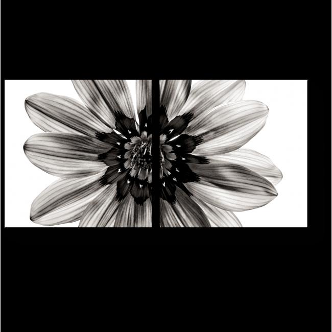 Модульная картина Гармония цветка