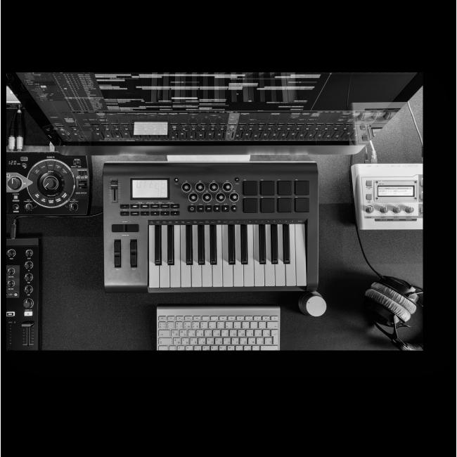 Модульная картина Мир звука