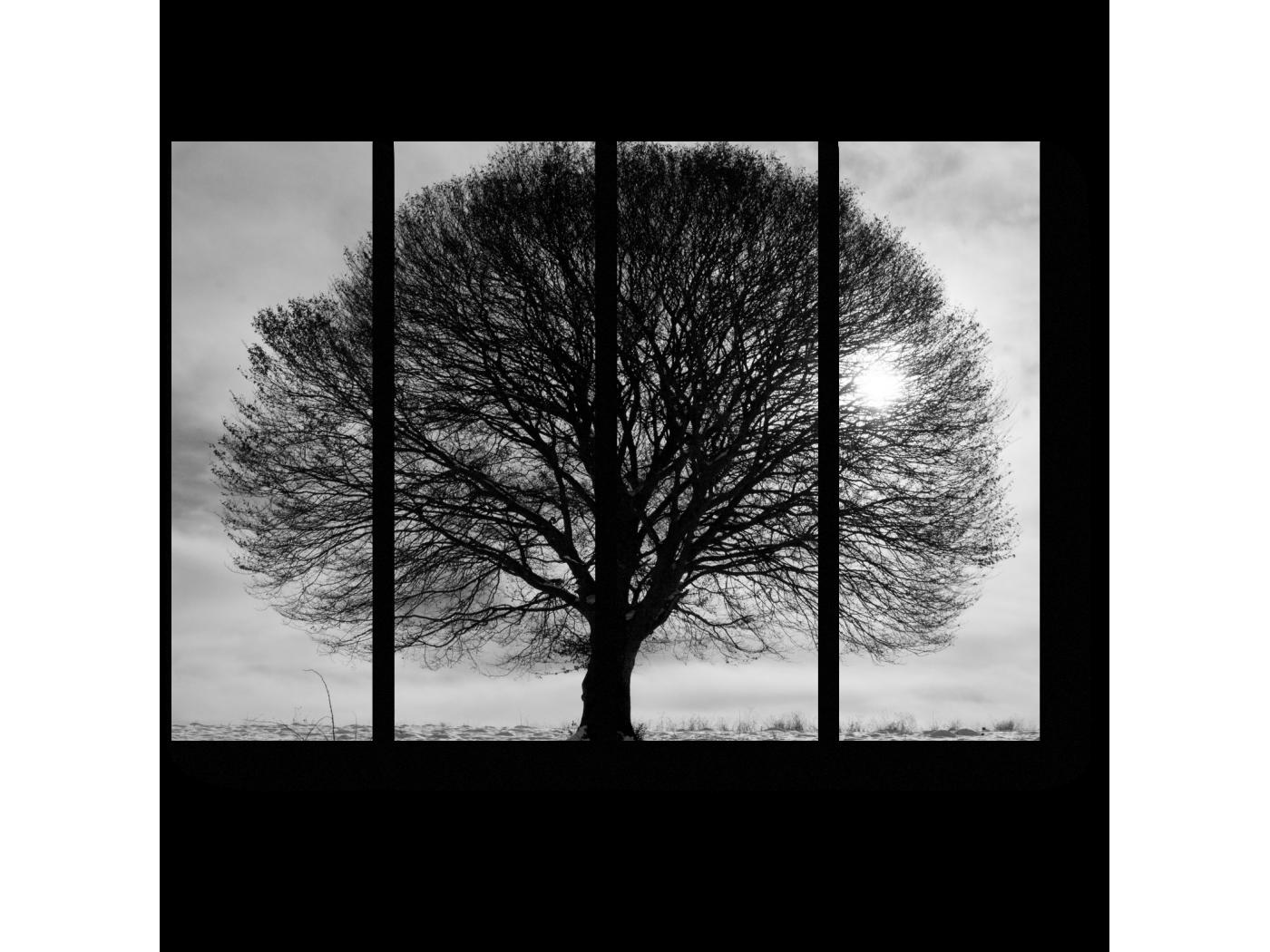 Модульная картина Древо жизни (60x45) фото