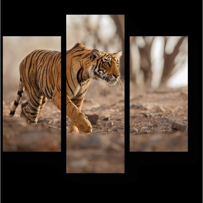 Модульная картина Тигр на охоте