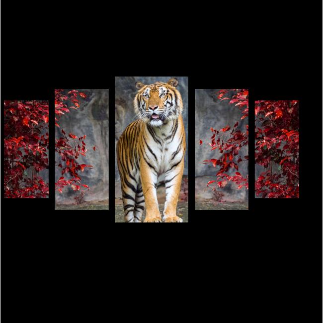 Модульная картина Полосатый хищник