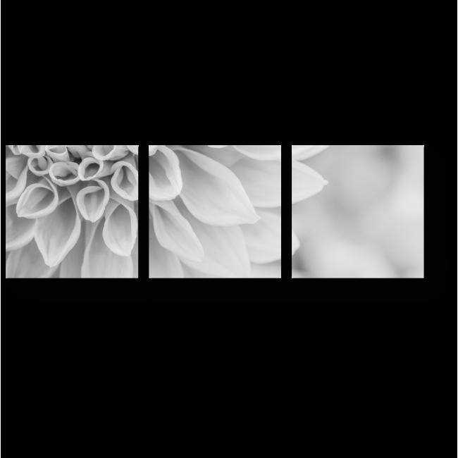 Модульная картина Касаясь лепестков