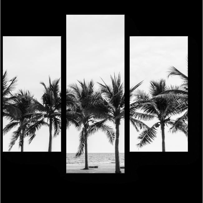 Модульная картина Пальмы