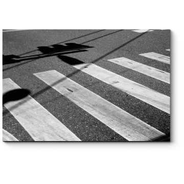 Модульная картина Городская зебра