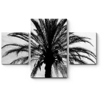 Модульная картина Пальма
