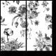 Черно-белое цветение