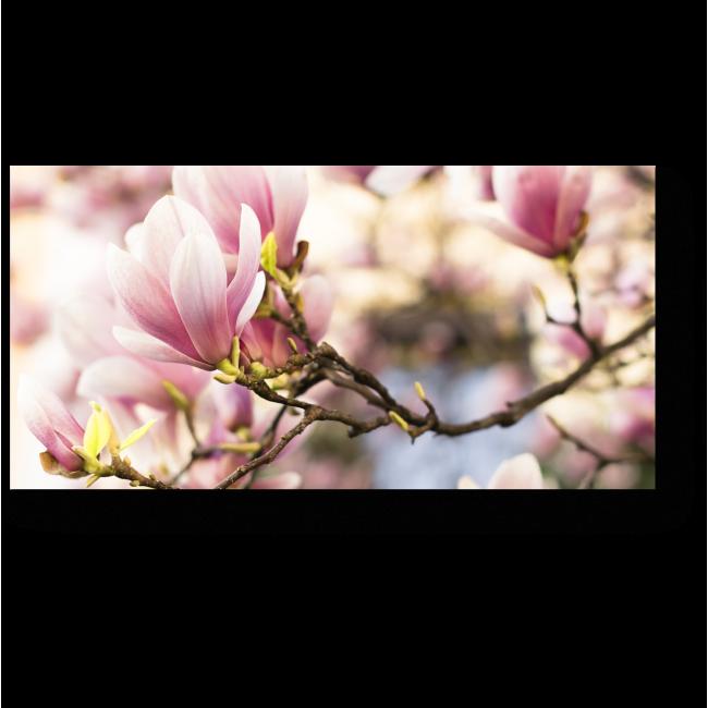 Модульная картина Весны прекрасное цветение