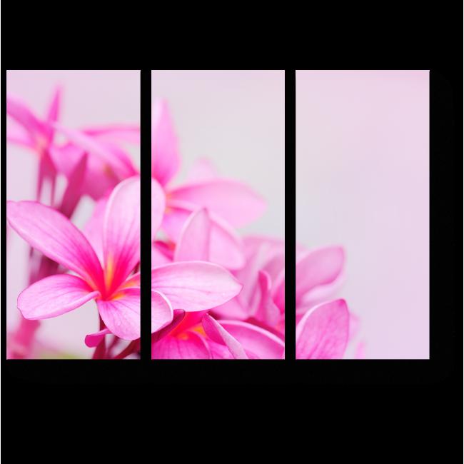 Модульная картина Свежие тропические цветы
