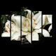 Чистые лилии