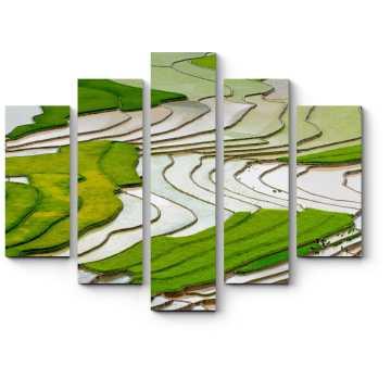 Рисовое поле в Му Чан Чай