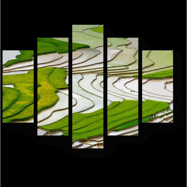 Модульная картина Рисовое поле в Му Чан Чай