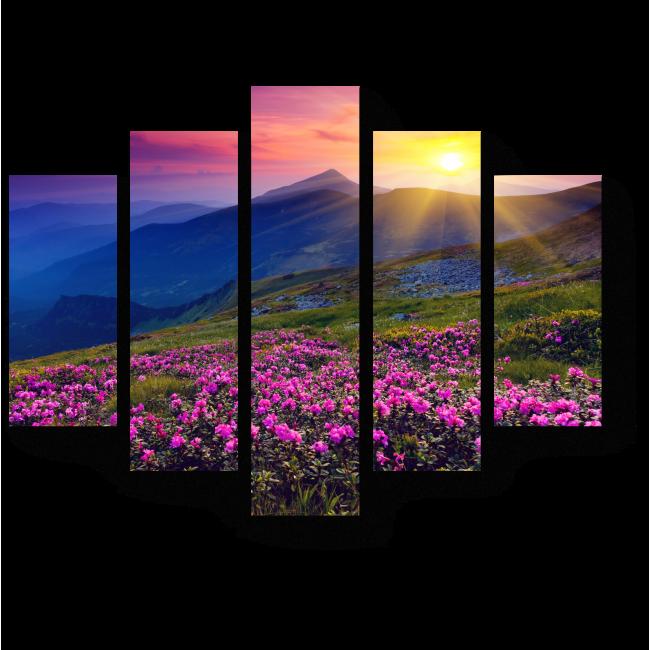 Модульная картина Розовые рододендроны в горах