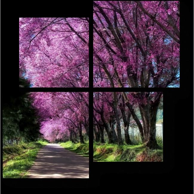 Модульная картина Вишня в цвету