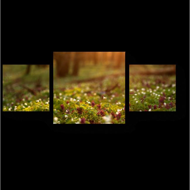 Модульная картина Цветущая поляна