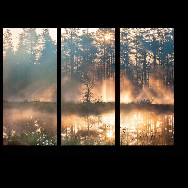 Модульная картина Утренние лучи