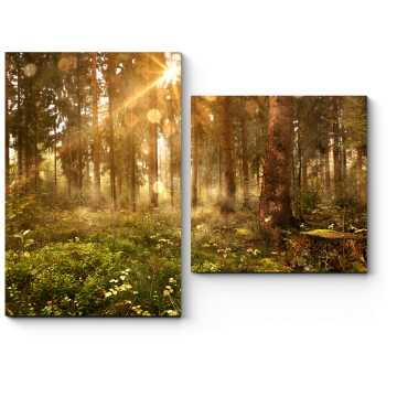 Лучи солнца, пронизывающие лес