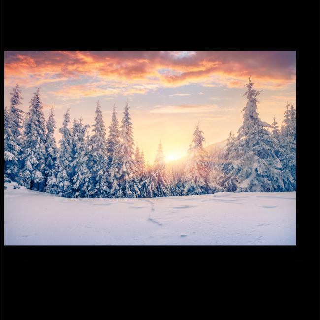 Модульная картина Горный зимний лес