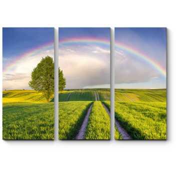После дождя всегда приходит радуга