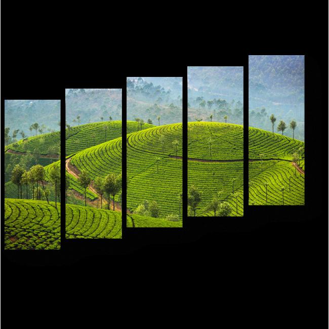 Модульная картина Красота зеленых полей
