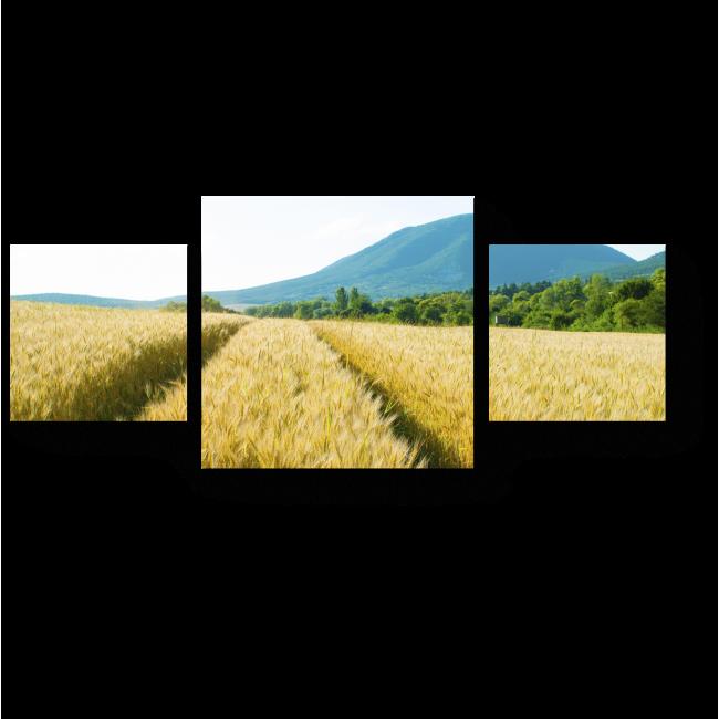Модульная картина Пшеничное поле в лучах солнца