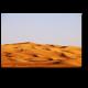 В пустыне все спокойно