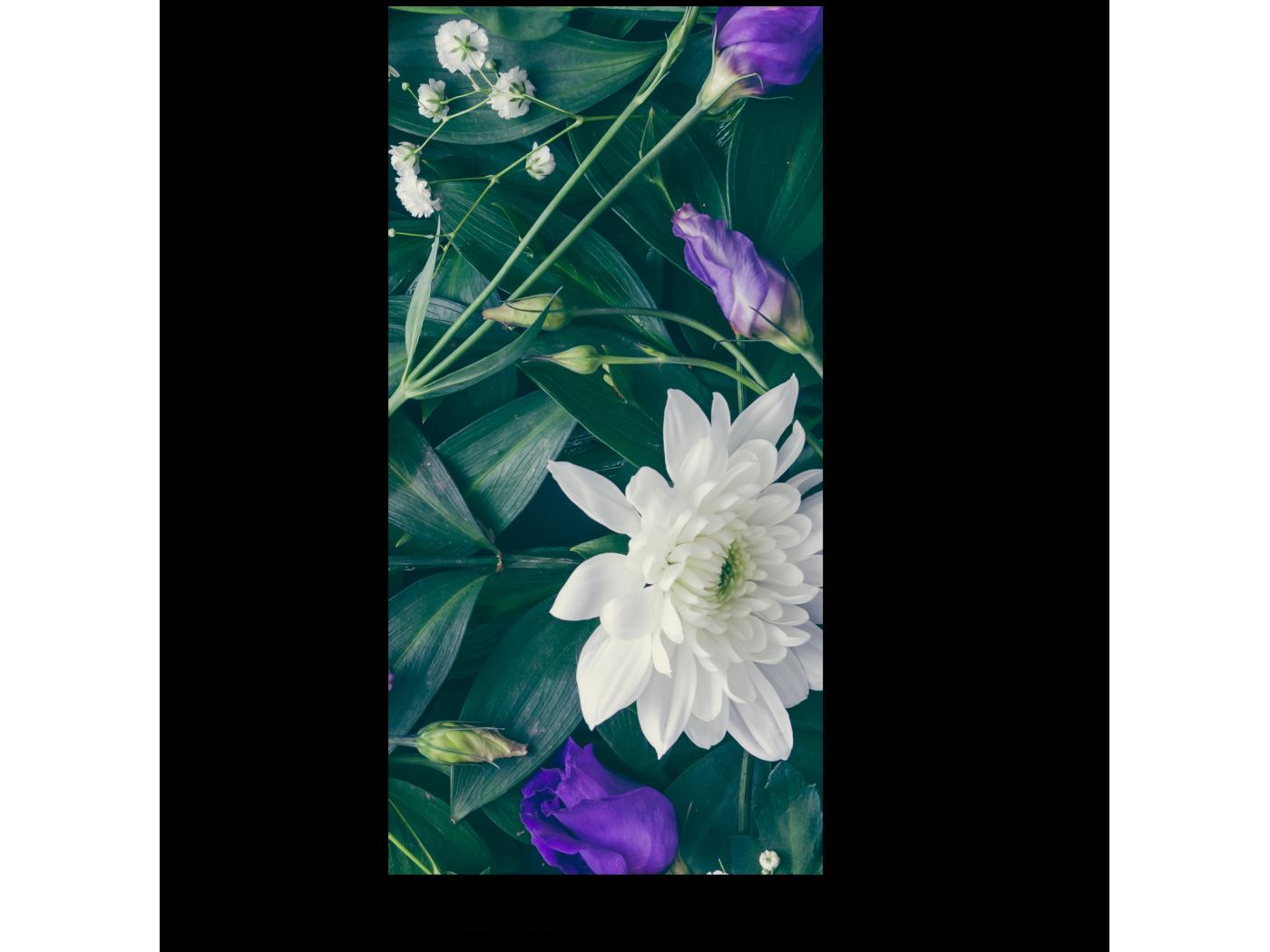 Модульная картина Белые цветы хризантем (20x40) фото