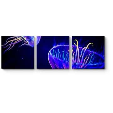 Модульная картина Сияющие медузы