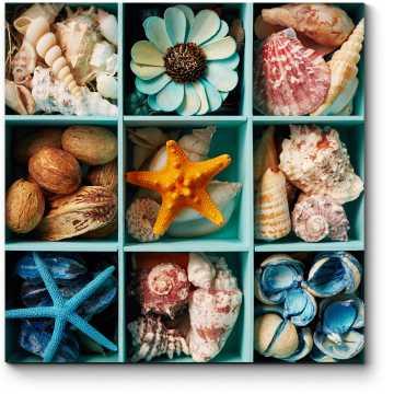 Коробочка с морскими сокровищами