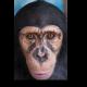 Очаровательный шимпанзе