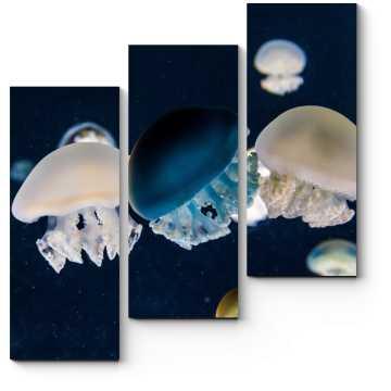 Модульная картина Красивые медузы