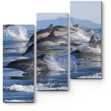 Модульная картина Семья дельфинов