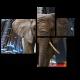 Слон на фоне города