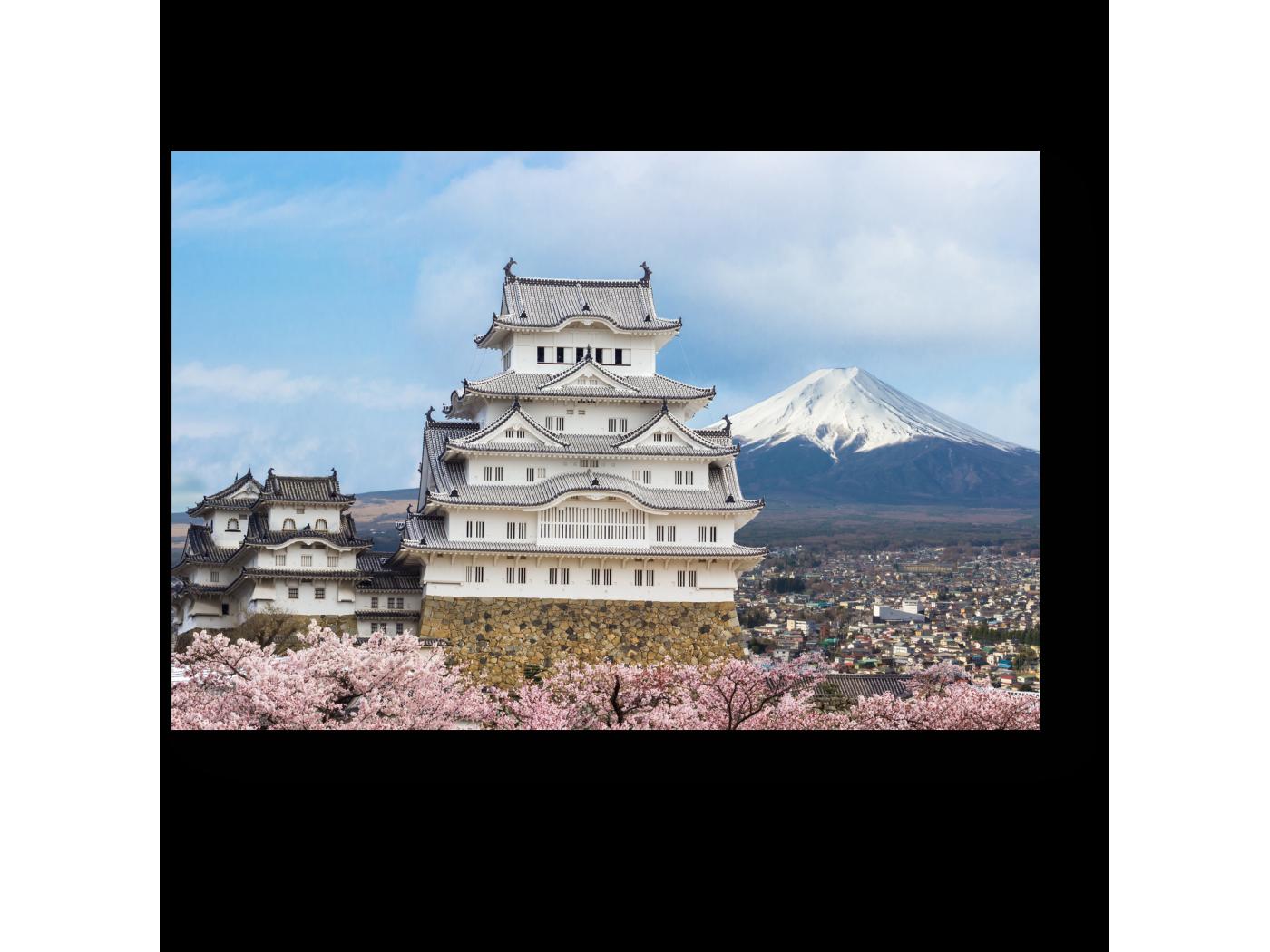 Модульная картина Himeji Castle and full cherry blossom (30x20) фото