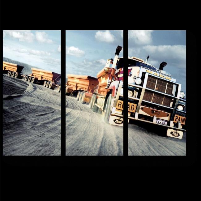Модульная картина Фура в дороге