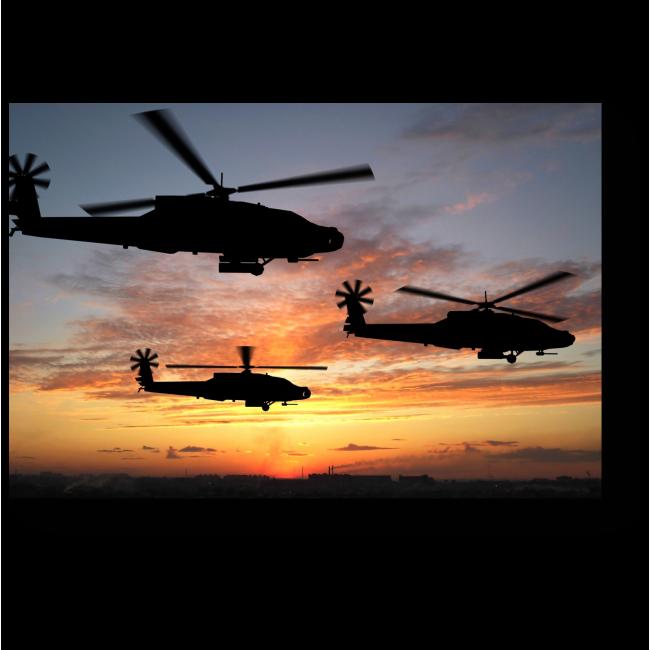 Модульная картина Воздушное трио на закате