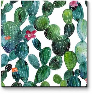 Акварельные кактусы