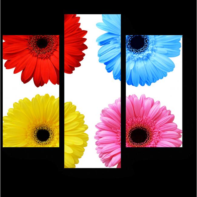 Модульная картина Цветовое разнообразие, герберы