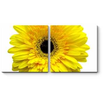 Модульная картина Солнечная гербера